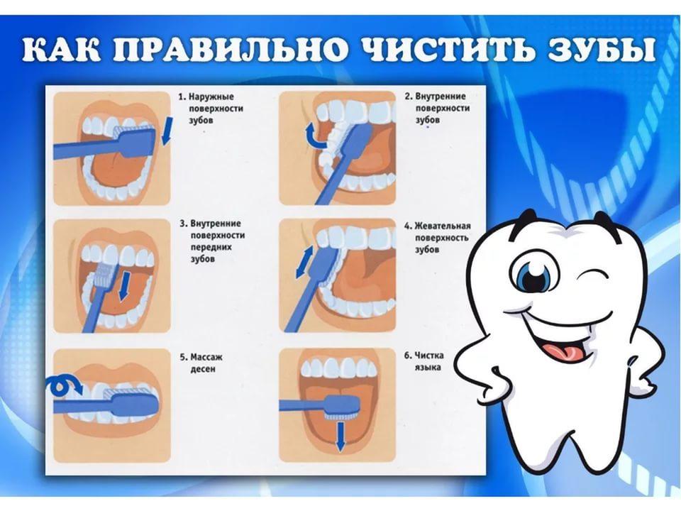 Картинки по запросу как чистить зубы